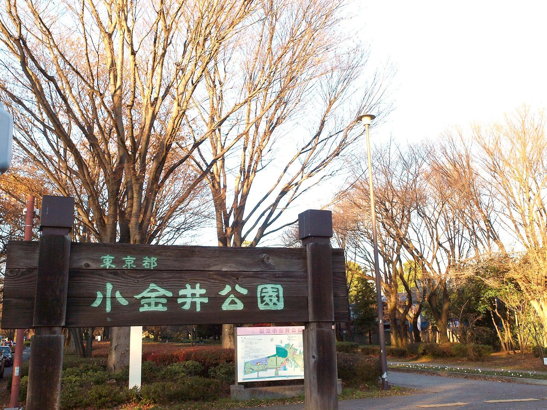 小金井公園|小金井市